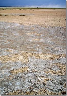 Drying Lake Abiyata