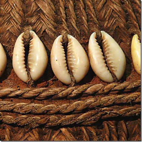 Cowrie Shells on a Gorfa